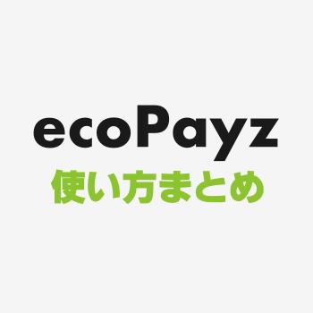 ecopayzガイド