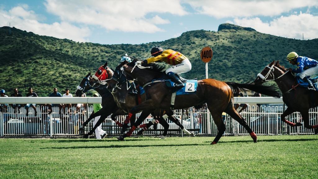 スポーツベットアイオーの競馬の賭け方
